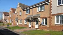 Terraced home for sale in Badger Court, Broxburn...