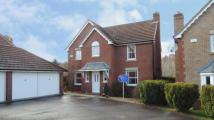 Detached house for sale in Tantallon Gardens...