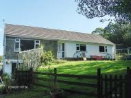 4 bedroom Detached house for sale in Belle Vue New School...