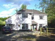 property for sale in Trefin, 8 Cilycwm Road, Llandovery, Carmarthenshire. SA20 0DU