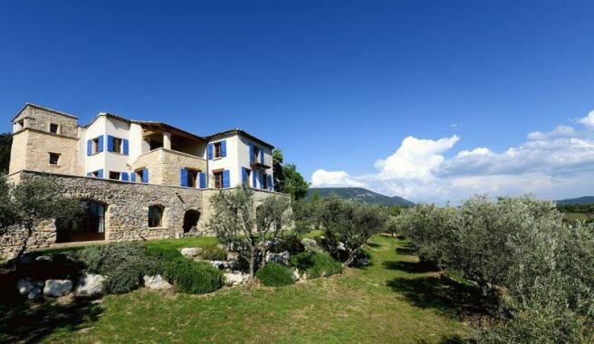 350 olive trees