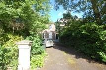 3 bedroom Flat in Grainger Park