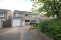 3 bed semi detached home in Kingston Park