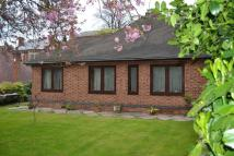 Detached Bungalow to rent in Redcliffe Road...