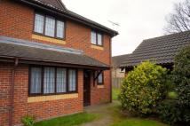 2 bed semi detached house to rent in Holliwell Close...