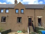 3 bed Terraced house to rent in Davidson Terrace...