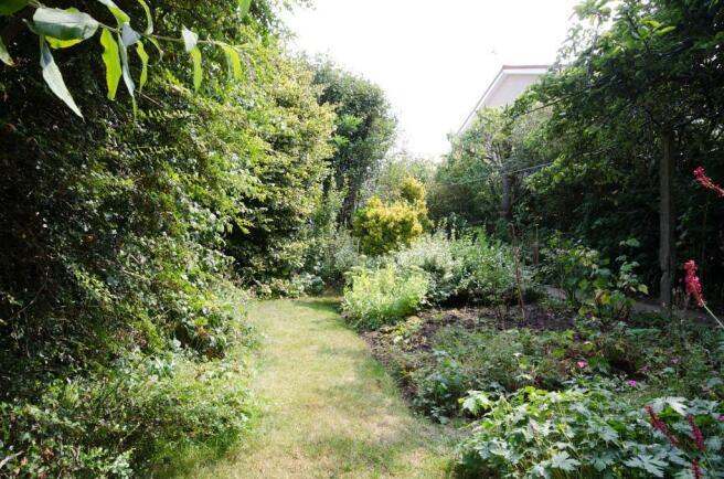 Garden at Back