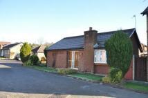 Detached Bungalow to rent in Epsom Croft, Anderton...
