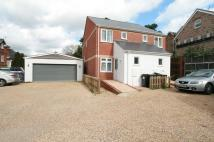 semi detached property to rent in Frances Road, Bournemouth