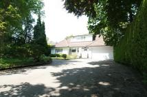 Detached Bungalow for sale in Little Forest Road...