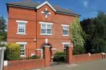 semi detached house in Cross Deep, Twickenham
