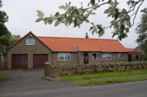 Detached Bungalow for sale in Radcliffe Road, Bambrugh...