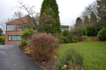 6 bed Detached house for sale in The Dell, Morpeth, NE61
