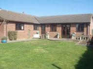 3 bed Detached Bungalow for sale in Springfield Park...