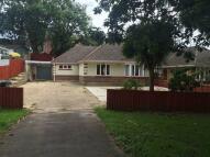 Detached Bungalow to rent in Moorside Road