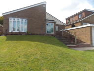 Detached Bungalow to rent in Norton View, Halton...