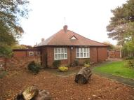 Detached Bungalow in 440 Allerton Road...