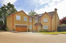 Detached home in Hill Croft, Radlett...