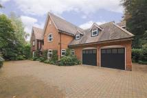 Detached home in The Warren, Radlett