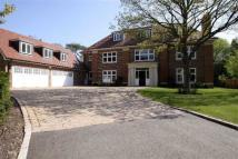 7 bedroom Detached home for sale in Beech Hill Avenue...