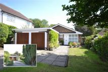 3 bed Detached Bungalow for sale in Parkgate Avenue...