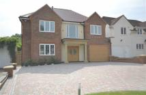 6 bedroom Link Detached House in Kingwell Road...