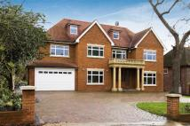 new property in Beech Hill Avenue...