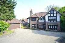 6 bed Detached property for sale in Pagitts Grove...