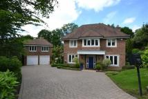 7 bed Detached home in Burwood Place...