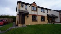 semi detached home for sale in Raven Wynd,  Wishaw, ML2