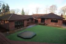 Bungalow for sale in Mill Road, Allanton...