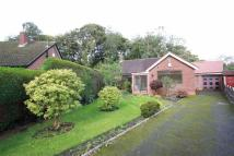 Detached Bungalow for sale in Spinney Drive, Sale