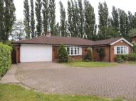 Detached Bungalow in Glaziers Lane, Guildford