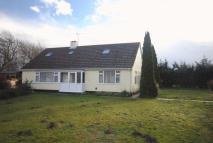 5 bed Detached Bungalow for sale in Clements Way, Beck Row...