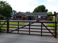 4 bedroom Detached Bungalow in Flint Mountain, CH65QR
