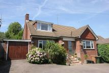 Detached Bungalow for sale in Carlton road, Reigate