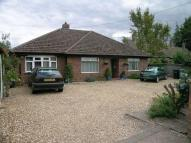Detached Bungalow for sale in Oak Street, Thetford