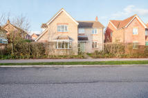 Detached house for sale in Brook Farm Road...