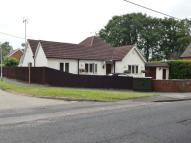4 bedroom Detached Bungalow for sale in Owlsmoor Road, Owlsmoor...