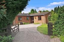 Detached Bungalow in Old Coach Road...