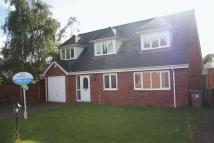 4 bed Detached home in Copperbeech Grove...