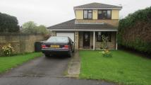 3 bed Detached home in Maes-Y-Crochan ...