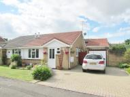 Semi-Detached Bungalow for sale in Cleddau Close...