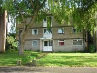 Flat to rent in Cranleigh Rise, Rumney...