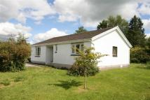 3 bedroom Detached Bungalow for sale in Myddfai Road, Llangadog...