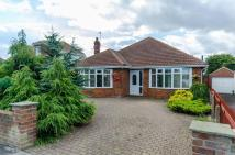 Detached Bungalow for sale in Hollym Road, WITHERNSEA...