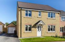 Detached home for sale in The Glade, WITHERNSEA...