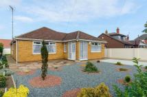 3 bedroom Detached Bungalow in Victoria Avenue...