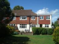4 bed semi detached house to rent in Farncombe,