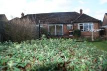 2 bed Bungalow in Clover Lea, Farncombe...
